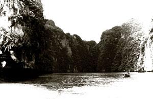 ko-phi-phi-island-thailand