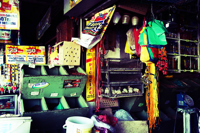 san-fernando-philippines-market